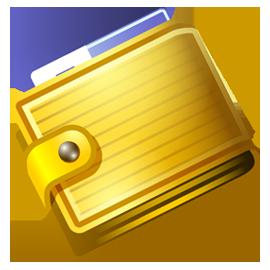 Домашняя бухгалтерия для Windows (Переносная лицензия для установки на флешку)